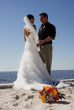 Pares tropicais do casamento de praia fotos de stock royalty free