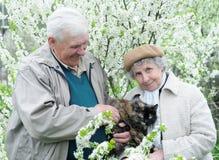 Pares velhos felizes Fotos de Stock Royalty Free