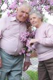 Pares velhos felizes Fotografia de Stock Royalty Free