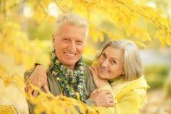 Pares velhos no parque do outono Fotos de Stock Royalty Free