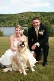 Pares y animal doméstico de la boda Imagen de archivo libre de regalías