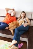 Pares y perro Imagen de archivo