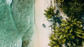 Paret går på stranden mellan havet och palmträden royaltyfri fotografi