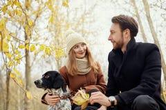 Paret som är förälskat på en varm höstdag, går i parkera med en gladlynt hundspaniel Förälskelse och mjukhet mellan en man och en arkivbilder