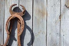 Parete antica dello strumento di ferratura dei cavalli Fotografie Stock Libere da Diritti