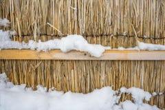 Parete asciutta della paglia con neve Immagini Stock Libere da Diritti