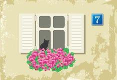 Parete con la finestra ed i fiori Fotografia Stock Libera da Diritti