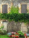 Parete con Windows e l'edera, Francia fotografie stock libere da diritti