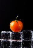Parete dei cubetti di ghiaccio con il pomodoro ciliegia fresco sulla tavola bagnata nera S Immagini Stock