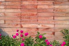 Parete del blocco di legno con i fiori Immagini Stock Libere da Diritti