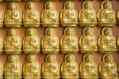 Parete del Buddha dell'oro, tempiale cinese, Tailandia Immagine Stock