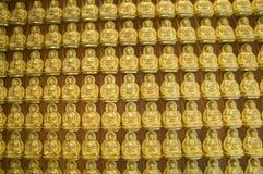 Parete del Buddha dell'oro, tempiale cinese, Tailandia Immagini Stock Libere da Diritti