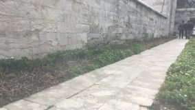 Parete del giardino della moschea di Suleymaniye video d archivio