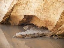 Parete dell'arenaria di un canyon del fiume Fotografia Stock