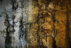PARETE dell'oro & dell'argento Fotografia Stock