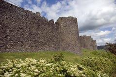 Parete della città di Conwy Immagini Stock Libere da Diritti