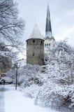 Parete della fortezza di Tallinn immagini stock libere da diritti