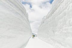 Parete della neve Immagine Stock