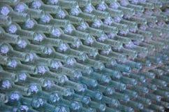 Parete delle bottiglie dalla regione del vino di Niederösterreich Fotografie Stock Libere da Diritti