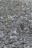 Parete delle rocce Immagine Stock