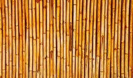 Parete di bambù immagine stock libera da diritti
