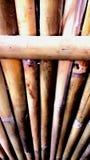 Parete di bambù Immagine Stock