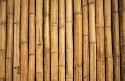 Parete di bambù Fotografie Stock Libere da Diritti
