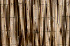 Parete di bambù con la priorità bassa metallica delle parentesi graffe Fotografie Stock