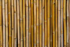 Parete di bambù del pannello Fotografia Stock Libera da Diritti