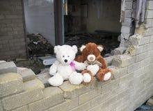 Parete di costruzione abbandonata abbandonato di Teddy Bears Sitting On Smashed Fotografia Stock Libera da Diritti