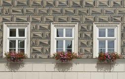 Parete di illusione, finestre e contenitori rustici di fiore Fotografia Stock