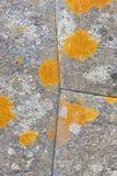 Parete di inca fatta delle pietre nella valle sacra, Perù Fotografia Stock Libera da Diritti