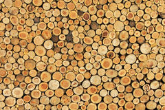 Parete di legno 2 Immagini Stock