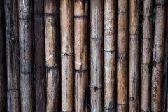 Parete di legno di bamb? immagine stock libera da diritti