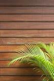 Parete di legno con le foglie di palma Immagine Stock Libera da Diritti