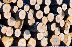 Parete di legno di legname all'aperto Immagine Stock Libera da Diritti
