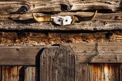 Parete di legno di struttura con i corni fotografie stock