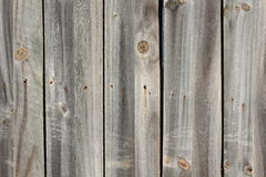 Parete di legno grigia Immagine Stock