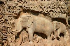 Parete di Mahabalipuram Immagine Stock