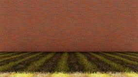 Parete di mattoni con il pavimento misto dell'erba Immagine Stock Libera da Diritti