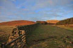 Parete di pietra asciutta, Northumberland, Inghilterra Fotografia Stock
