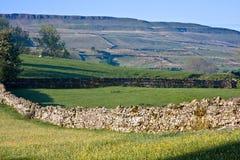 Parete di pietra asciutta in vallate del Yorkshire Immagini Stock