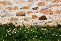 Parete di pietra con erba in basso. fotografia stock libera da diritti