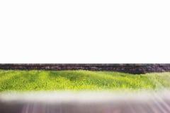Parete di pietra con erba verde e priorità alta vaga Fotografia Stock Libera da Diritti
