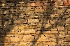 Parete di pietra con le ombre dei rami Immagine Stock Libera da Diritti
