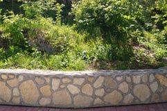 Parete di pietra con pianta Struttura della natura Fondo per testo, insegna, etichetta Fotografie Stock