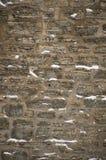 Parete di pietra del calcare di Snowy con il mortaio nell'inverno Fotografia Stock Libera da Diritti