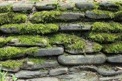 parete di pietra del muschio fotografia stock