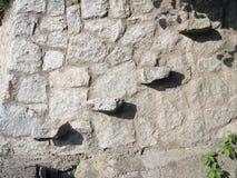 Parete di pietra della roccia con i punti Fotografie Stock Libere da Diritti