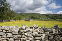 Parete di pietra e granaio, Swaledale, vallate del Yorkshire Fotografia Stock